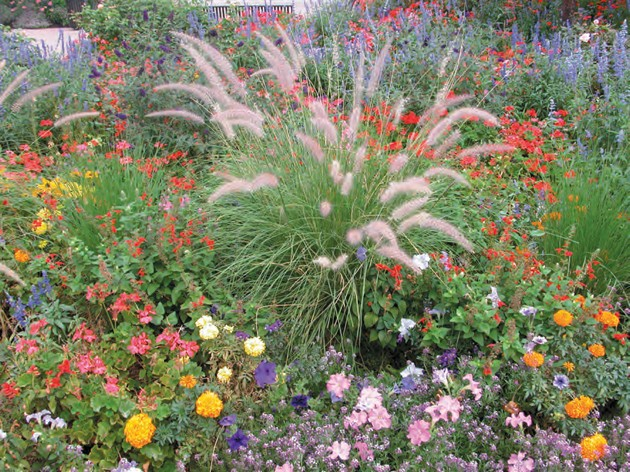 Annuals vs perennials which plants are better tooele transcript by mixing early and late blooming perennials with annual flowers the gardeners at temple square are able to keep beautiful colors in the flower beds at all mightylinksfo