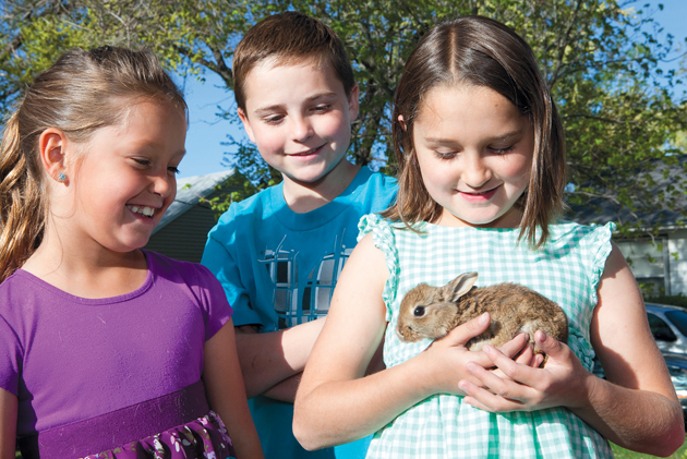 Petting zoo to welcome in spring at Clark Farm