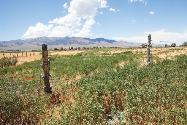 Grantsville approves cemetery extension next to Clark Farm