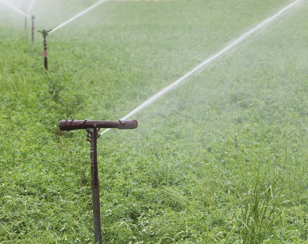 Irrigation company announces new weekend water restriction