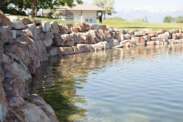 Stansbury service agency discuss plans for lake weed removal