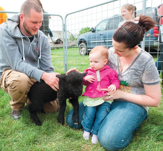 Clark Historic Farm to again host Baby Animal Days