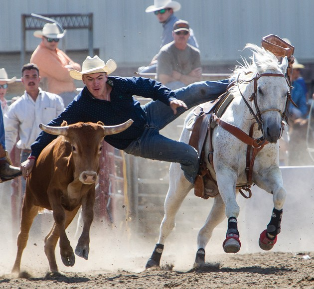 Bit N Spur Hosts 72nd Annual Rodeo 171 Tooele Transcript