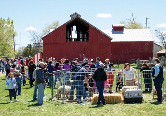 Big draw anticipated for Barnyard Babies at Clark Farm