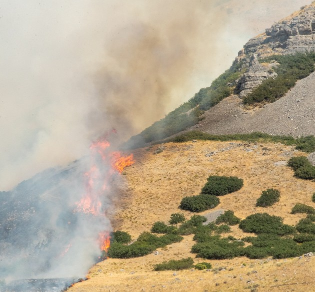 TCEM provides final details on Green Ravine Fire