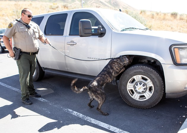 New K-9 joins Sheriff's office